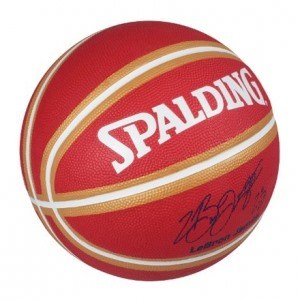 Spalding Lebron James