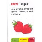 Французско-русский, русско - французский словарь и разговорник Abbyy lingvo mini+ (28242 слова и словосочетания)