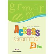 access 3 grammar book