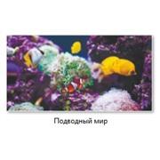 Экран (зашивка) под ванну 1,5 Кораловый риф