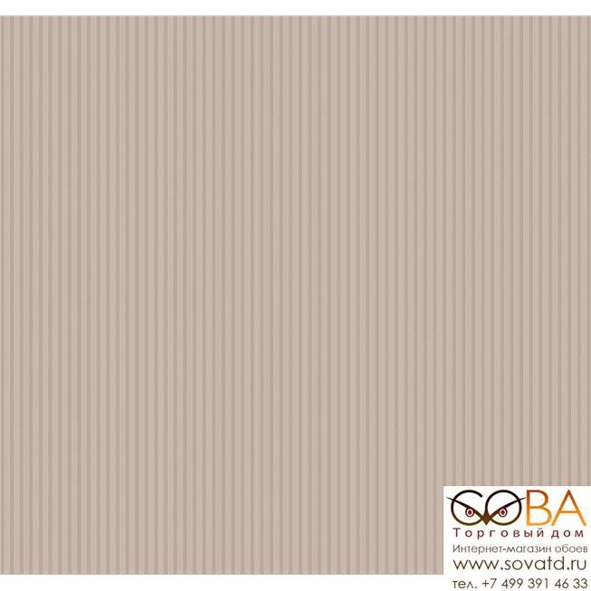 SD5012/2 Обои Loymina Shade купить по лучшей цене в интернет магазине стильных обоев Сова ТД. Доставка по Москве, МО и всей России